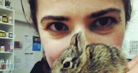 less bunny!